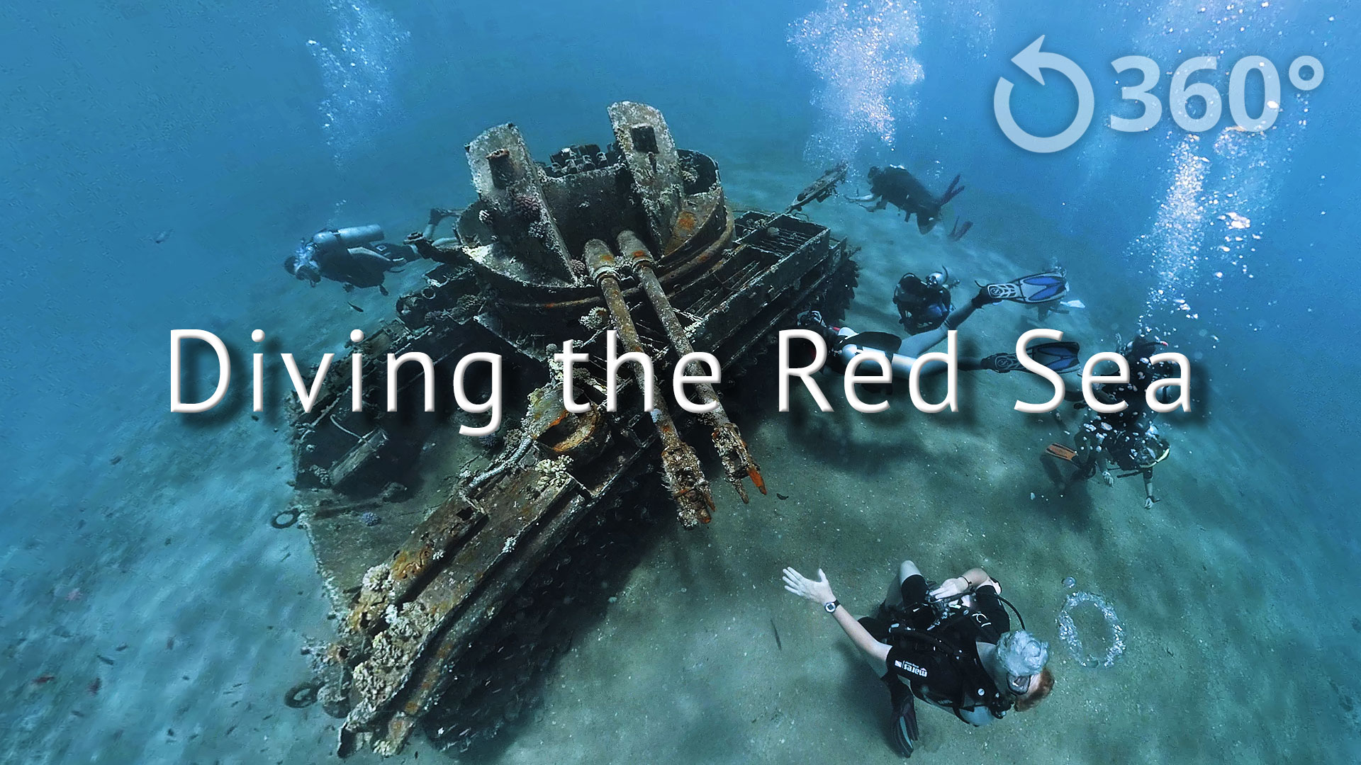 Featured Image Diving the Red Sea