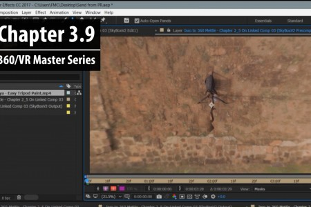 Chapter 3.9: Removing a 360 Camera Rig from 360 Footage in After Effects | 360/VR Master Series