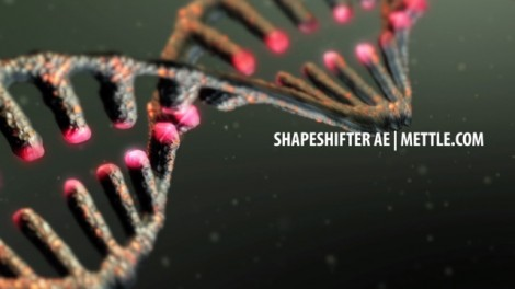 DNA Strand  |  ShapeShifter AE