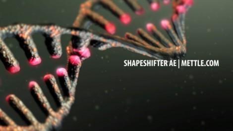 DNA Strand     ShapeShifter AE