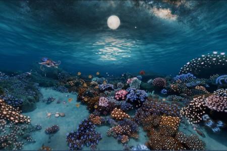 Inspiration: 360° Underwater Coral Garden | After Effects + FLUX