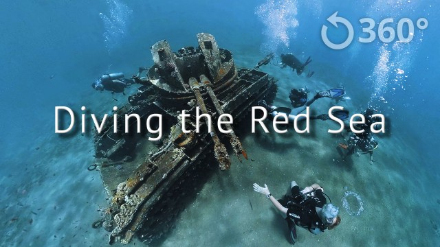 Diving the Red Sea 360° | 360 Labs
