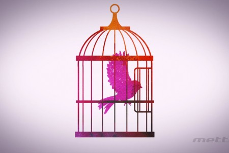 Canary Bird Cage for Tedx