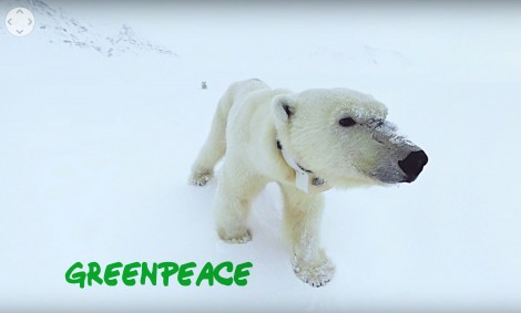 360/VR Journey to the Arctic   Greenpeace