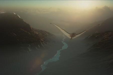 In Flight | FreeForm Pro